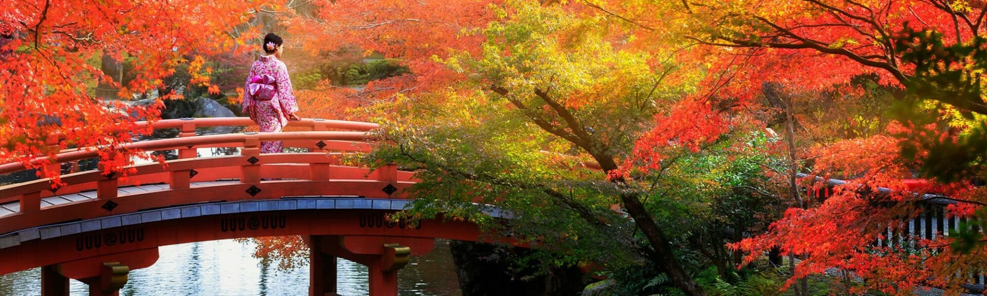Kyoto parc en automne