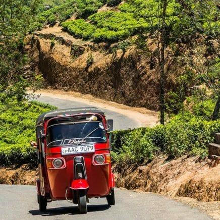 Sri Lanka tuk tuk plantations de thé