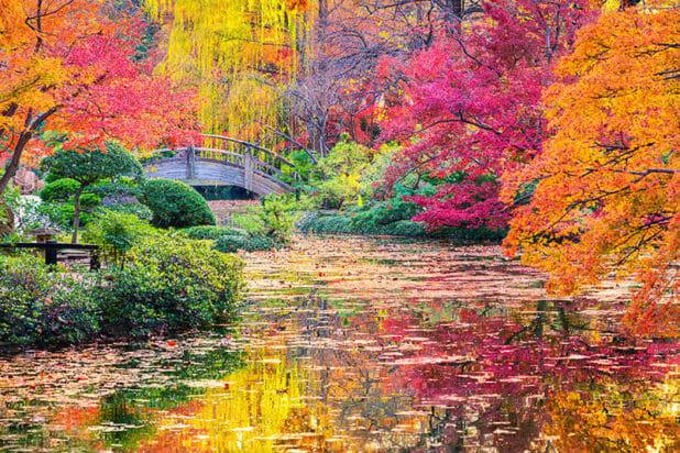 Japon_automne_02